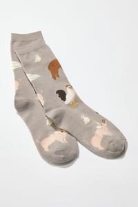 Farm Animal Socks