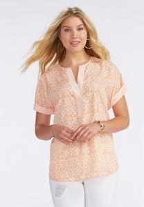 Island Scroll Popover Top-Plus