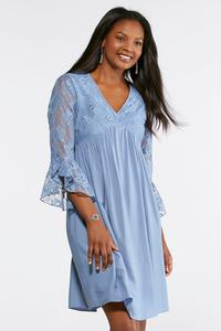 Lace Bodice Swing Dress
