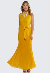 Plus Petite Pleated Maxi Dress