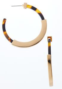 Lucite And Metal Hoop Earrings