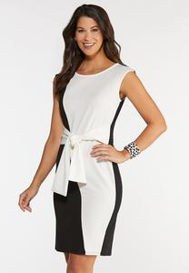 Contrast Sheath Dress