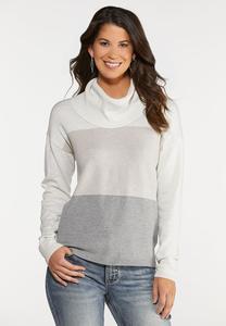 Plus Size Colorblock Cowl Neck Sweater