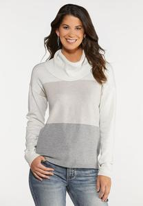 Plus Size Colorblock Cowl Neck Sweater