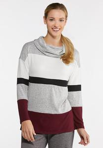 Plus Size Colorblock Cowl Neck Top