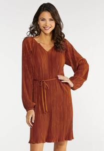 Plus Size Pleated Shift Dress