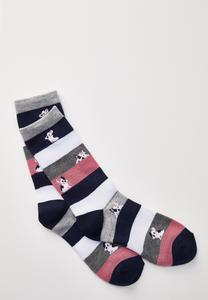 Dog Striped Socks