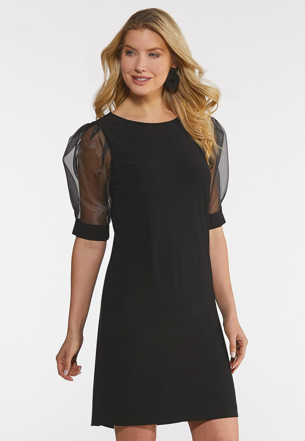 Organza Sleeve Dress