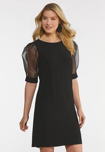 Plus Size Organza Sleeve Dress