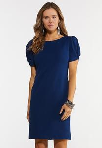 Plus Size Blue Puff Sleeve Dress