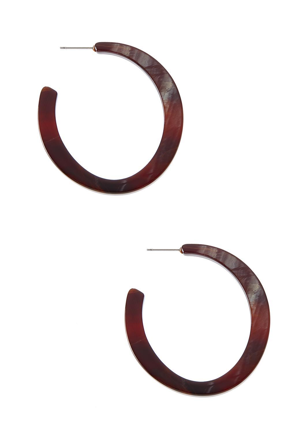 Lucite Hoop Earrings