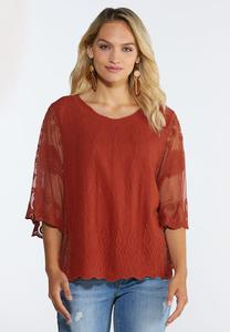 Plus Size Embroidered Mesh Sleeve Top
