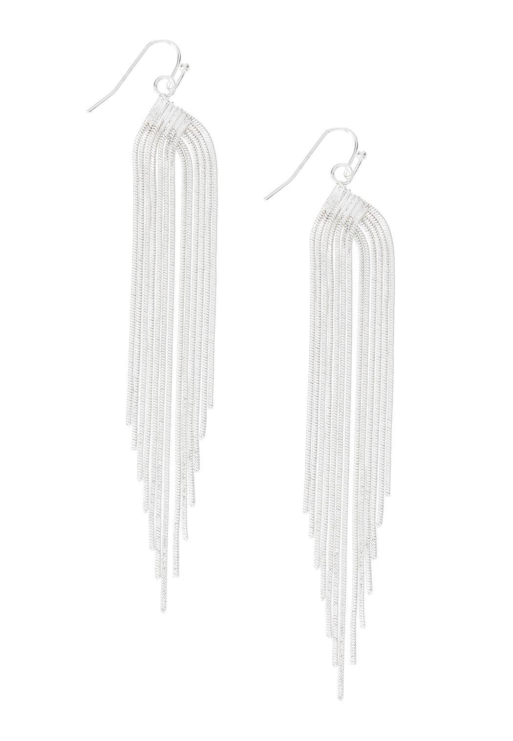 Snake Chain Fringe Earrings