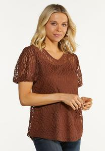 Plus Size Embroidered Balloon Sleeve Top