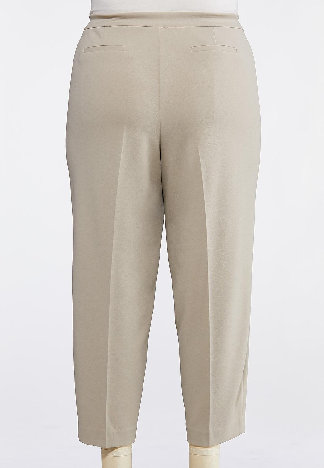 Plus Size Solid Pull-On Pants (Item #43820480)