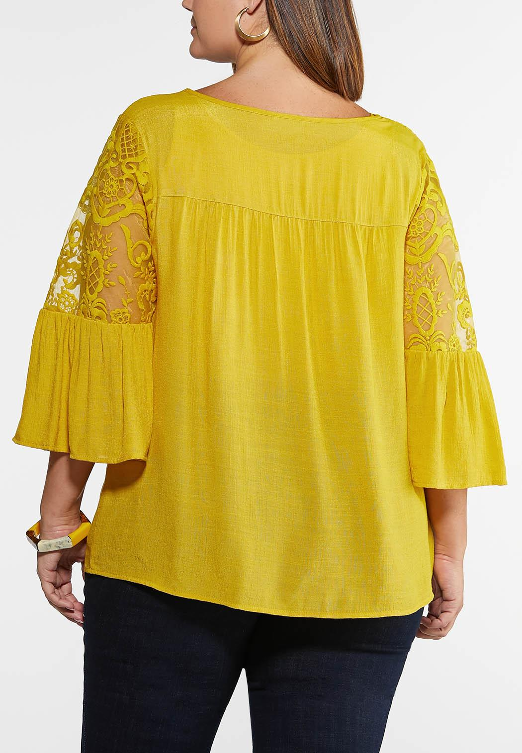 Plus Size Mesh Embroidered Poet Top (Item #43939750)