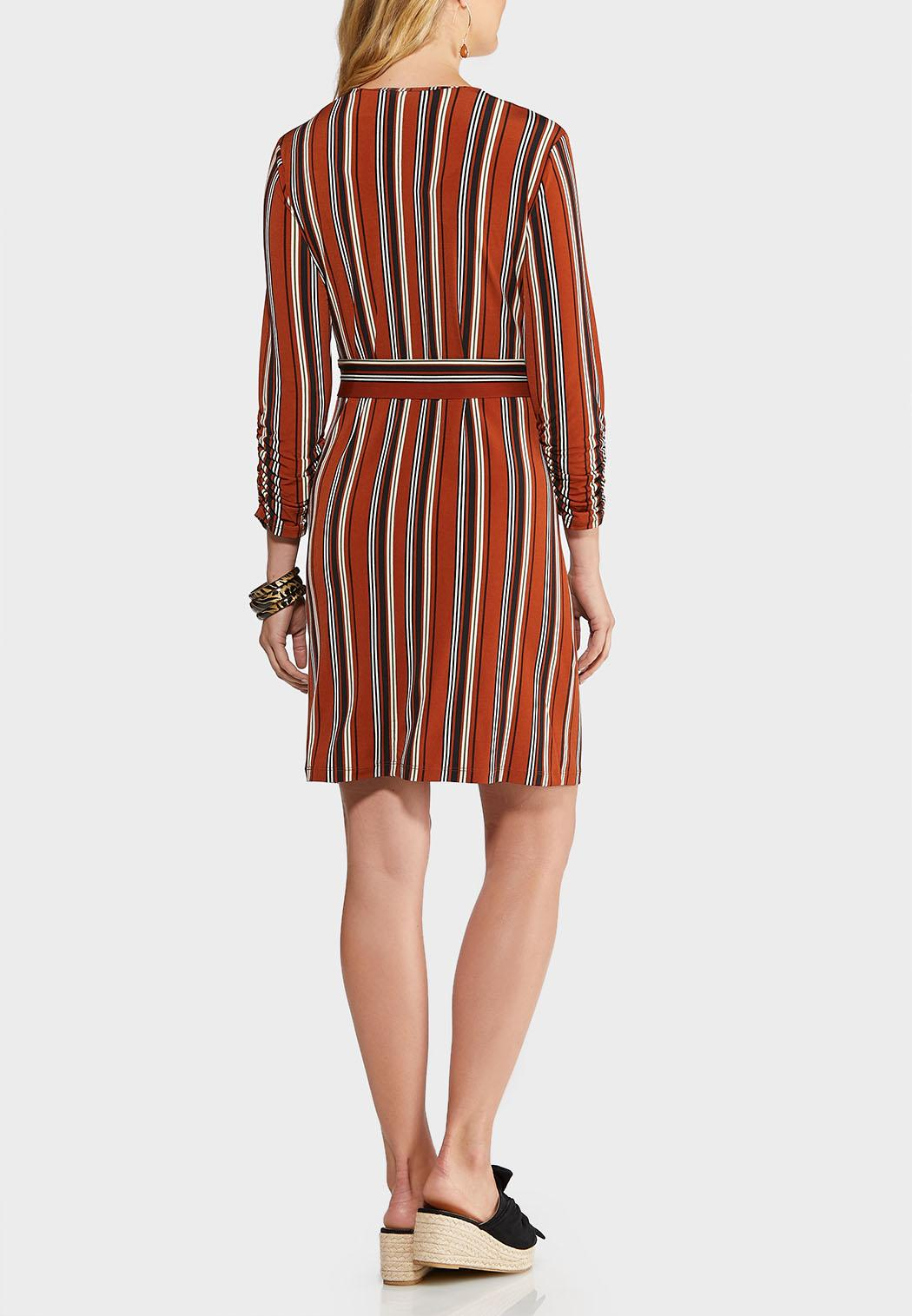 Plus Size Stripe Zip Front Shirt Dress (Item #43947882)
