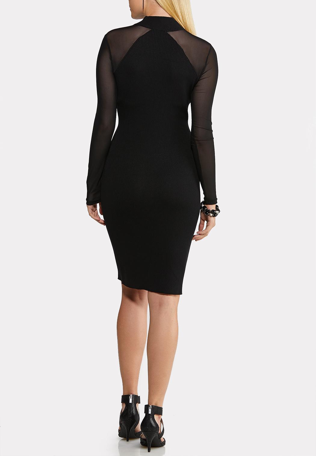 Illusion Sleeve Sweater Dress (Item #44081725)