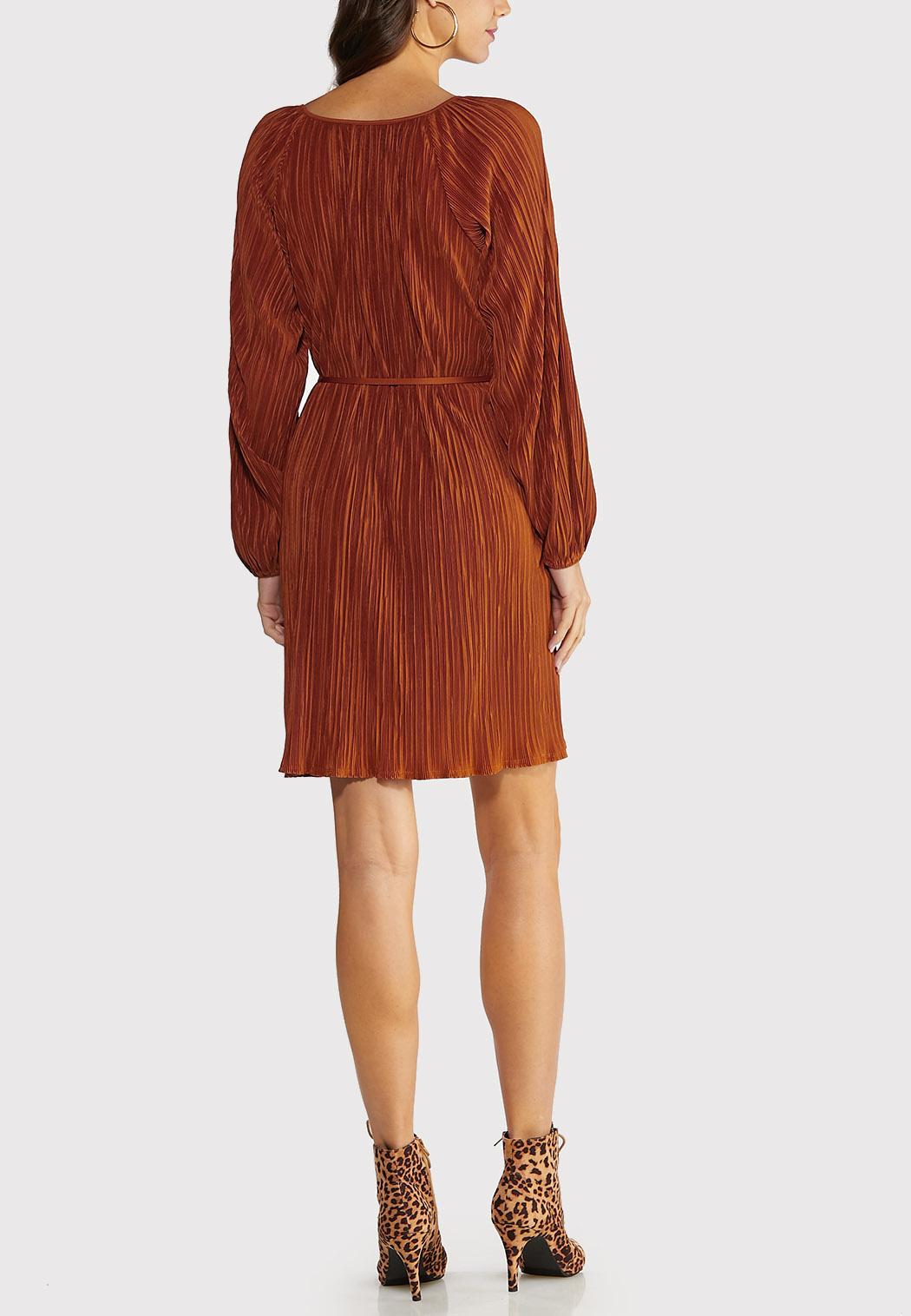 Pleated Shift Dress (Item #44089215)
