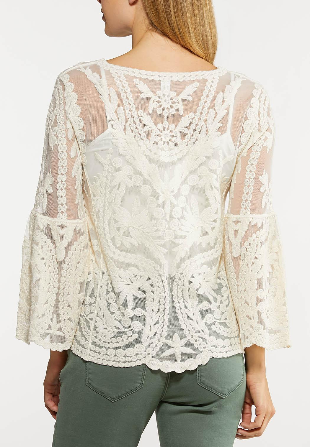 Plus Size Embroidered Mesh Top (Item #44094208)
