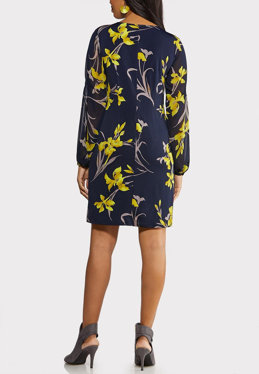 Plus Size Sheer Sleeve Swing Dress (Item #44110374)