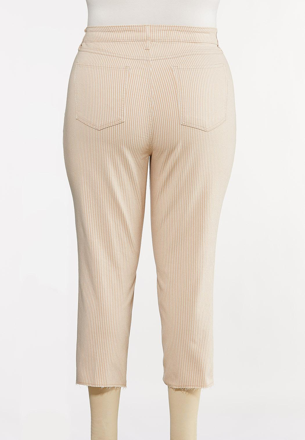 Plus Size Neutral Stripe Ankle Jeans (Item #44162338)