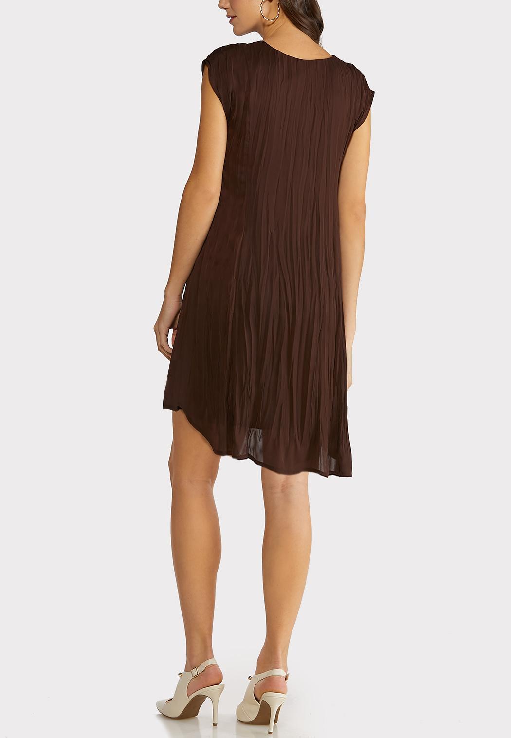 Brown Pleated Swing Dress (Item #44198292)