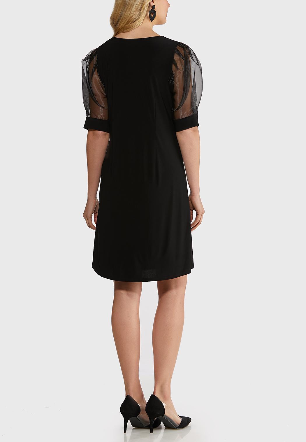 Organza Sleeve Dress (Item #44227923)