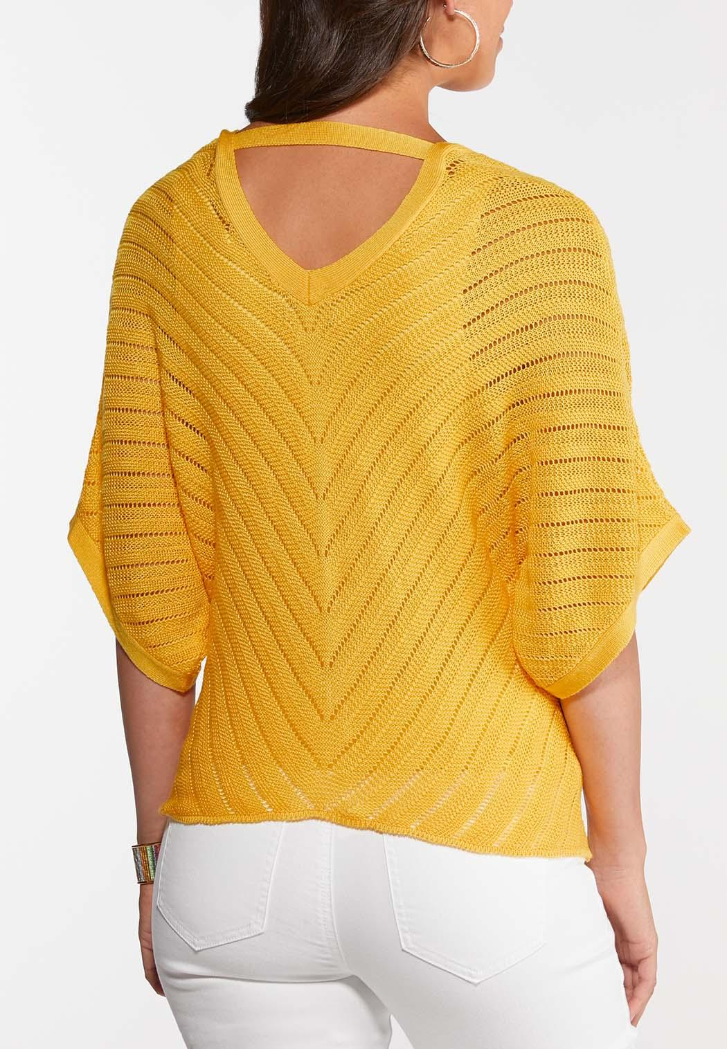 Plus Size Summer Sweater Top (Item #44270327)