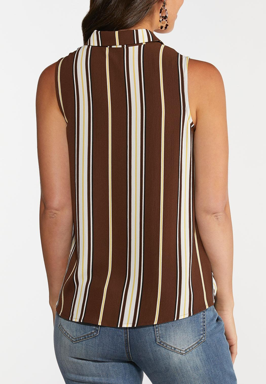 Brown Stripe Collared Top (Item #44273271)