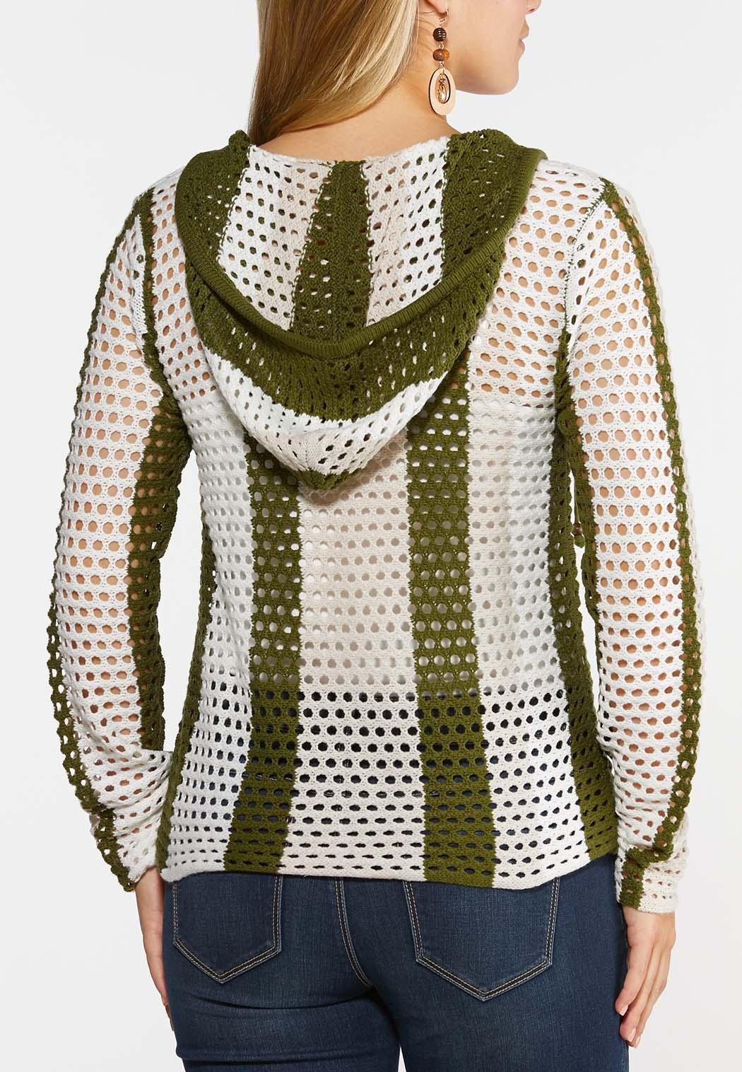 Plus Size Green Stripe Sweater (Item #44326485)
