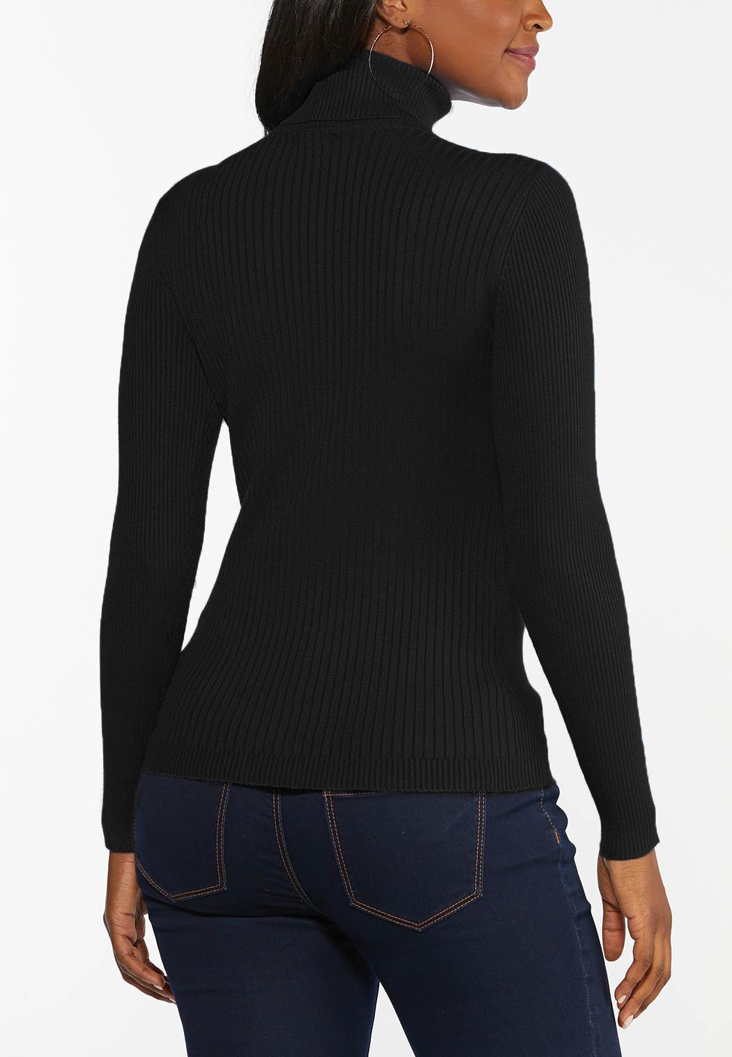 Plus Size Solid Ribbed Turtleneck Sweater (Item #44413876)