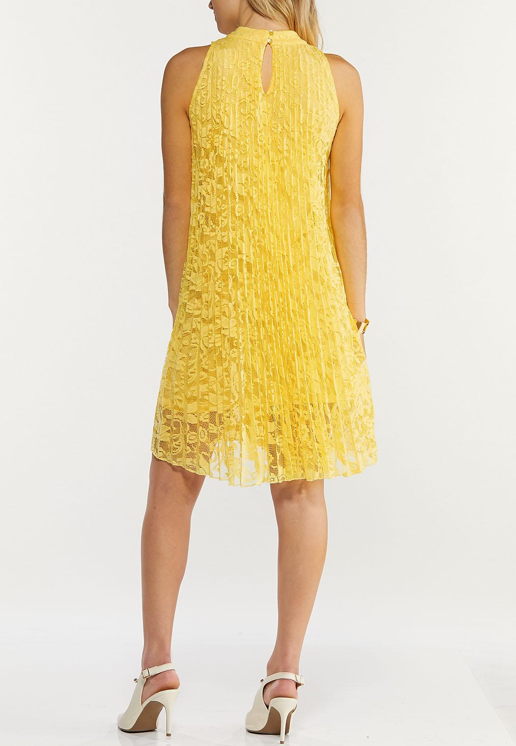 Plus Size Pleated Lace Swing Dress (Item #44507304)