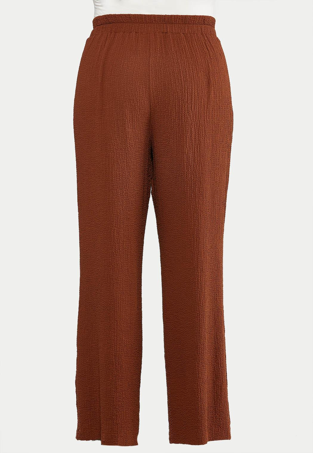 Plus Size Textured Tie Front Pants (Item #44514398)