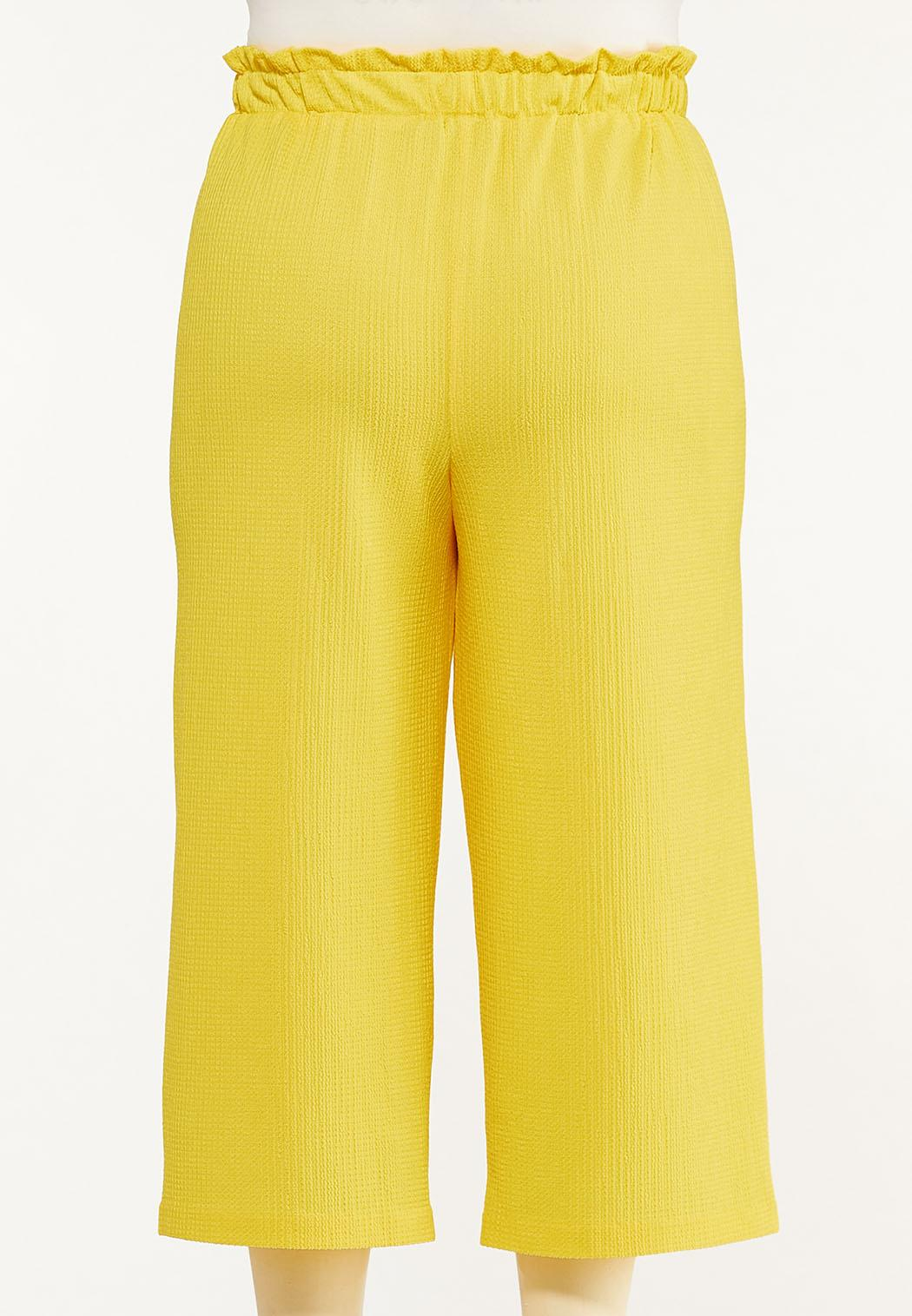 Plus Size Cropped Solid Textured Pants (Item #44547989)
