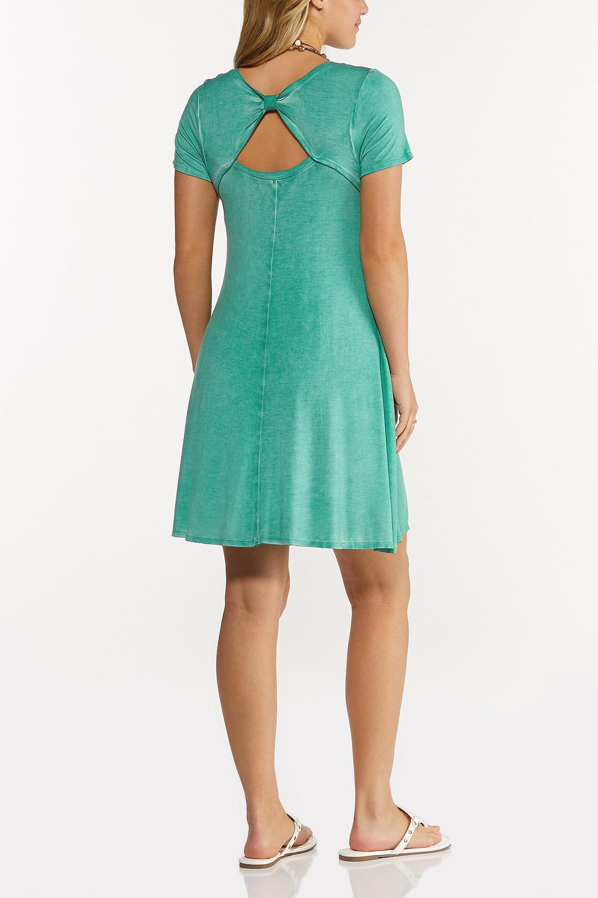 Dyed Shirt Swing Dress (Item #44635268)
