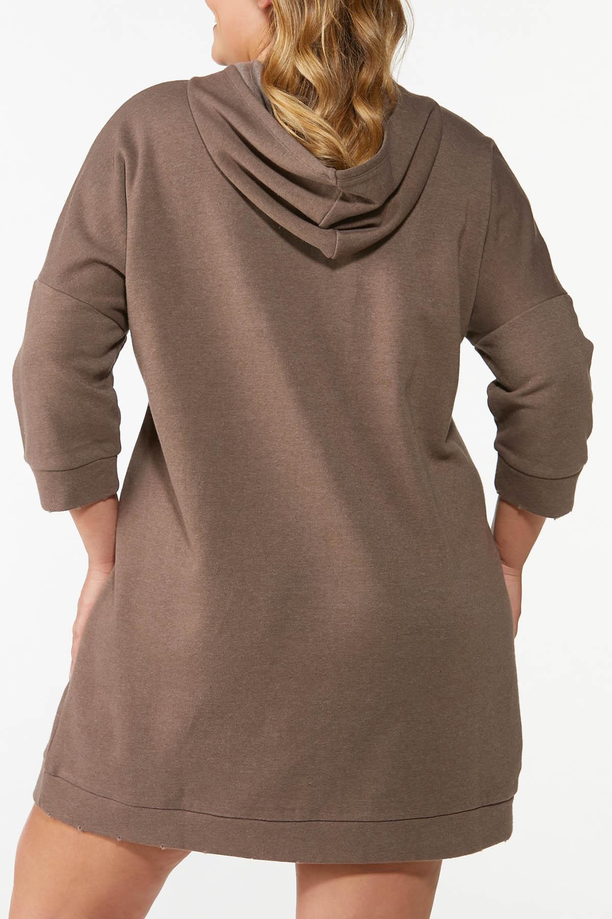 Plus Size Hooded Sweatshirt Dress (Item #44675669)