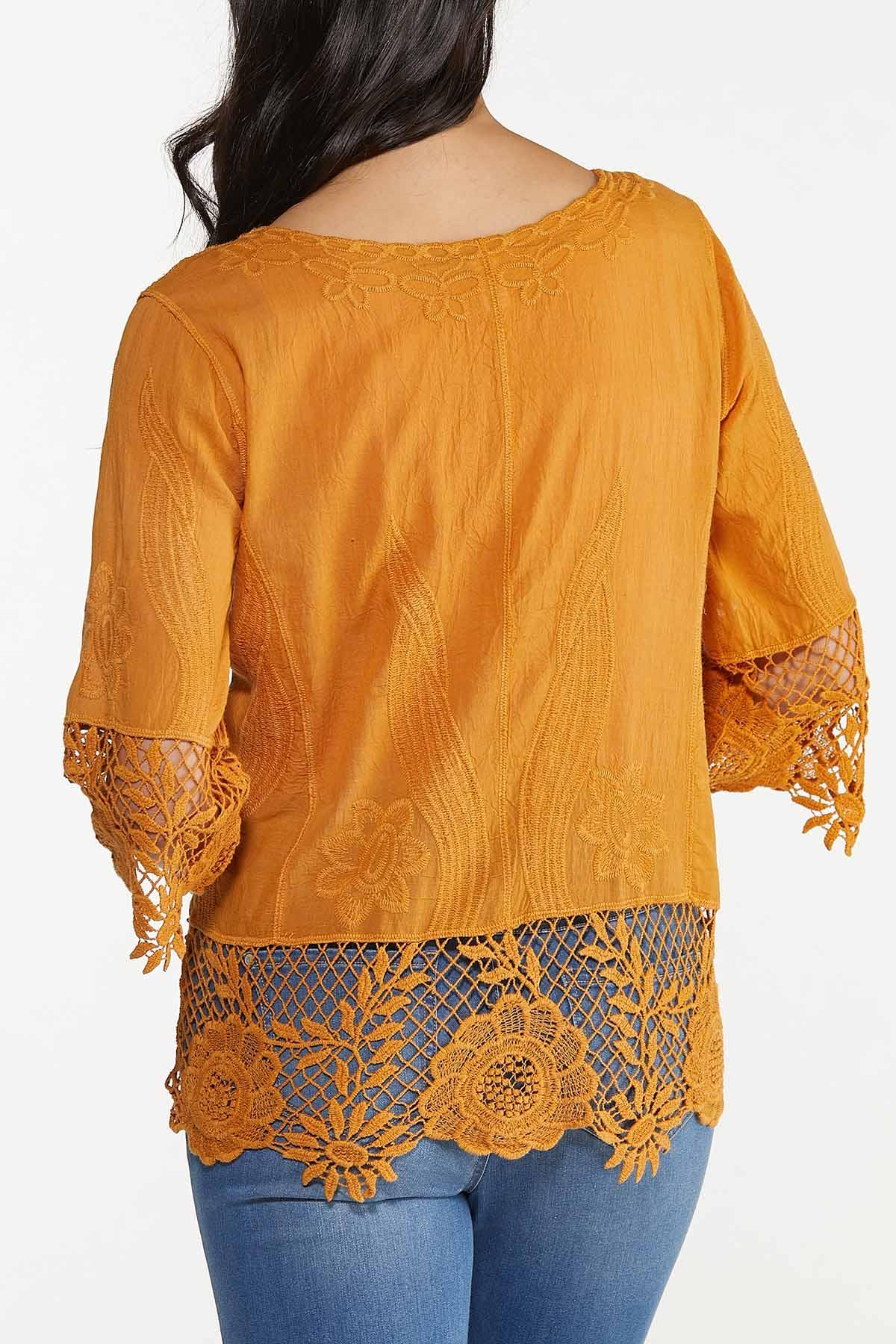 Plus Size Gold Embroidered Top (Item #44676090)