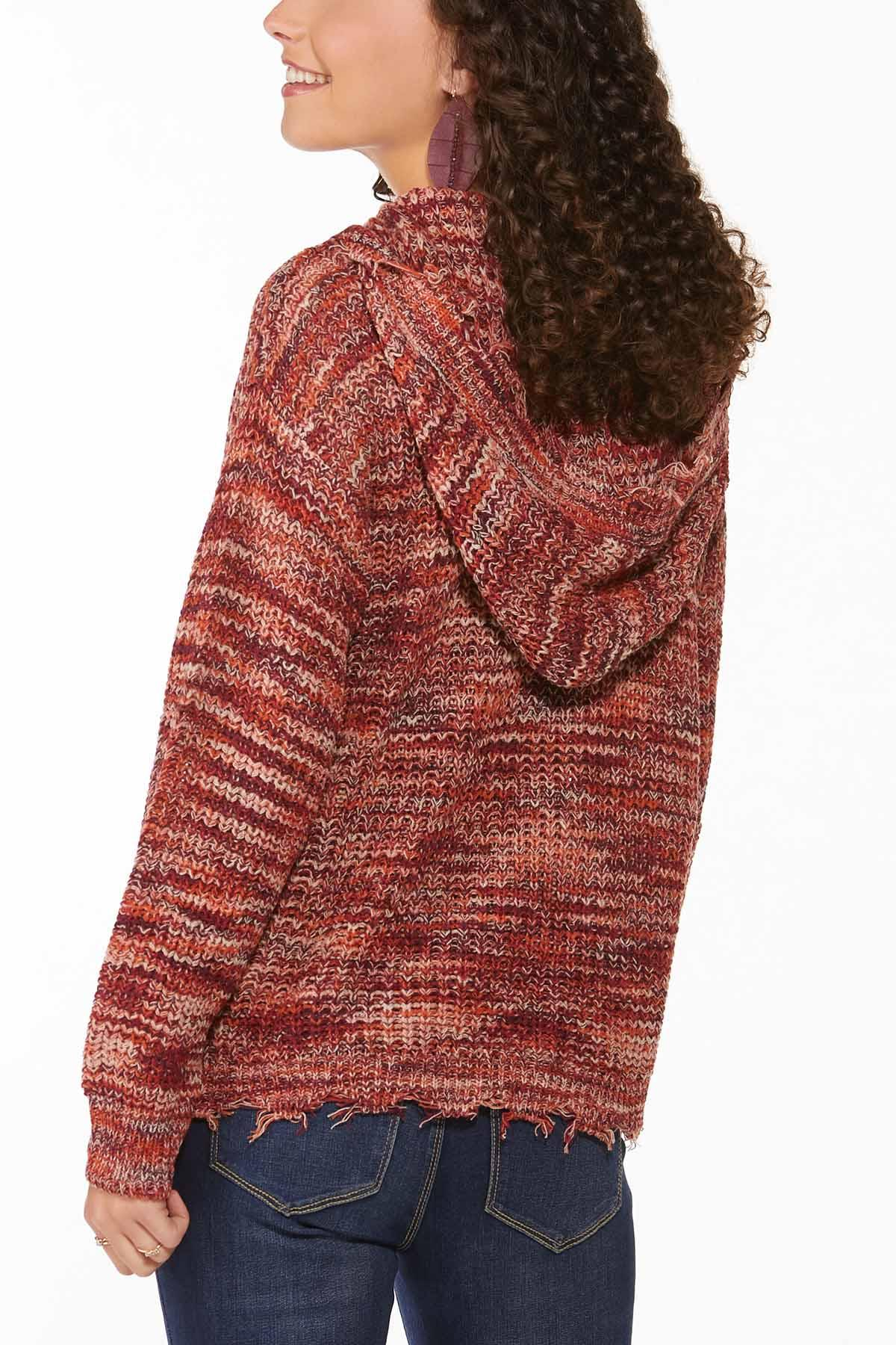 Distressed Hooded Sweater (Item #44746013)