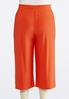 Plus Size Solid Cropped Palazzos alternate view