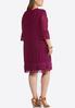 Plus Size Lace Mesh Babydoll Dress alternate view