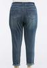 Plus Size Light Wash Skinny Ankle Jeans alternate view