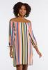 Plus Size Bright Stripe Shift Dress alternate view