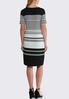 Plus Size Stripe Midi Dress alternate view