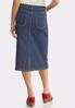 Plus Size Americana Stripe Denim Skirt alternate view