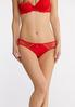 Plus Size Red Lace And Silver Panty Set alternate view