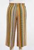 Plus Size Cropped Golden Stripe Pants alternate view