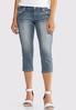 Petite Cropped Floral Rhinestone Jeans alternate view
