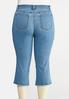 Plus Size Cropped Raw Hem Jeans alternate view