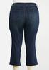 Plus Petite Dark Wash Kick Flare Denim alternate view